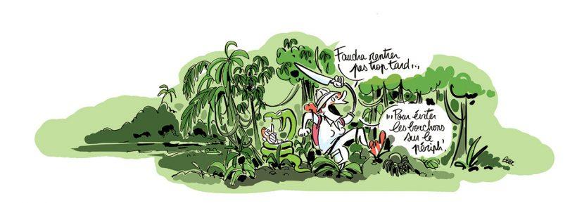 Microavenutre jungle.jpg