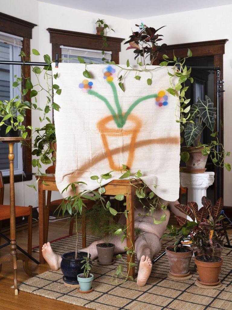 plants p