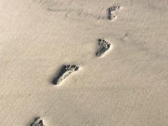 footprints on brown sand
