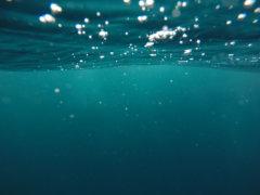 photo of underwater