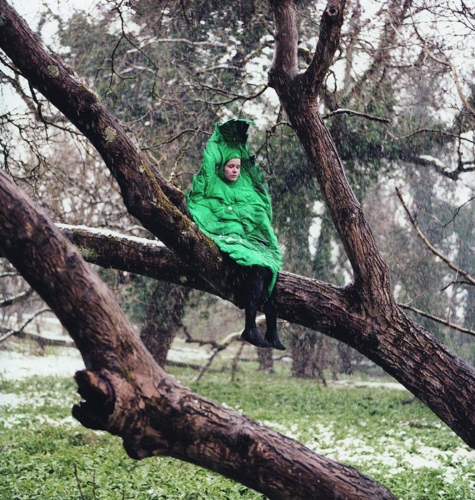 RA508 winterleaf tree print HR A