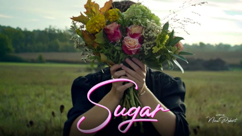 sugar 5245234