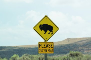 roadsignbisonandpleasestayontheroad.Warns