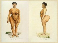 1024px-Sawtche_(dite_Sarah_Saartjie_Baartman),_étudiée_comme_Femme_de_race_Bôchismann,_Histoire_Naturelle_des_Mammifères,_tome_II,_Cuvier,_Werner,_de_Lasteyrie